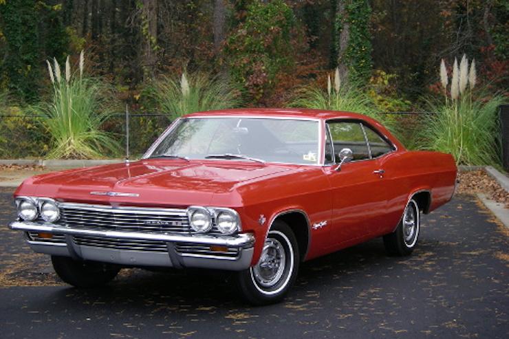 Important impala
