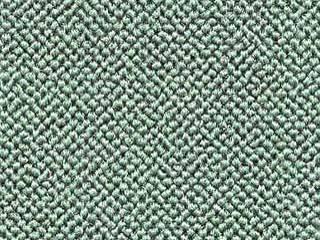 Auto Custom Carpet - Light Green Daytona Carpet