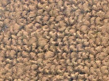 Auto Custom Carpet - Saddle 80/20 Gas Tank Covers Carpet - Image 1