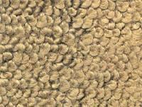 Trim Parts - Gold 80/20 Carpet