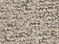 Interior - Carpet - ACC - Carpet Fawn