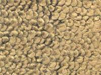 Nova - Auto Custom Carpet - Carpet Gold