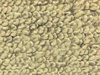 Interior - Carpet - ACC - Carpet Ivy Gold