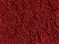 Interior - Carpet - ACC - Carpet Dark Red