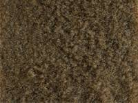 Nova - Auto Custom Carpet - Carpet Buckskin